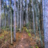 Kettle Moraine North Jigsaw