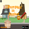 Pumpkin in Basket