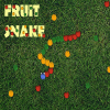 The Fruit Snake